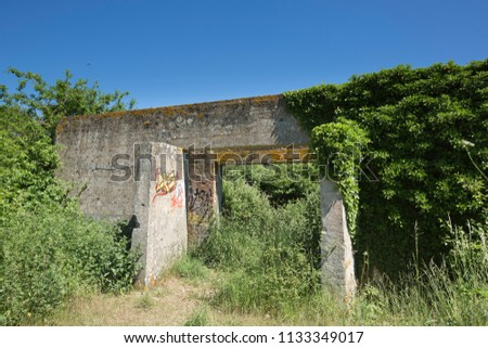 Old overgrown WW2 concrete and brick military airfield building reverting to nature with graffiti in a field in wooded farmland in summer at Worthy Down near Winchester in Hampshire, England, UK #1133349017