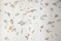 Old paper background texture with leaves and thuja