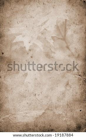 Old paper grunge autumn background - stock photo