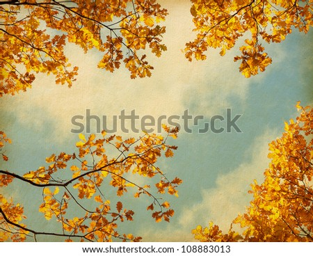 old paper. retro image of Autumn leaves on the sky background #108883013
