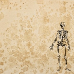 Old paper texture background for Halloween decoupage crafting scrapbooking. Skeleton skull decoration
