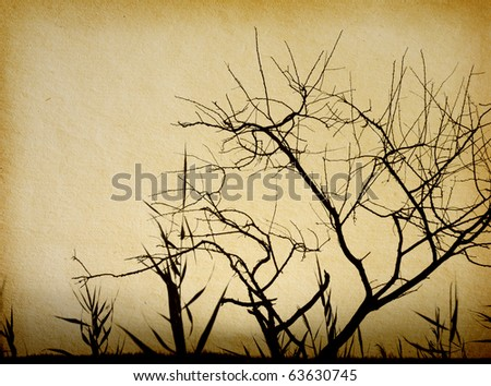 old paper textures. tree...