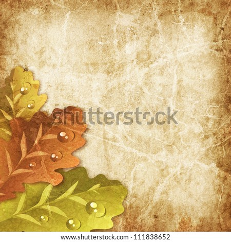 Old paper with oak leaves