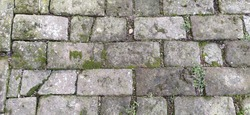 Old paving stones. Gray rectangular stones laid like tiles. Damp ancient path. Stones with moss, grass, leaves and soil. Retro. Stone texture for the road