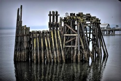 Old Pier Pilings in Bay