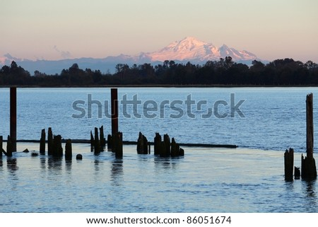 Old pilings on the edge of the Fraser River with Washington State's Mount Baker, a dormant volcano, in the background. Near Vancouver, British Columbia, Canada.