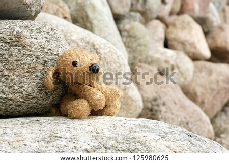 Old plush toy dog abandoned on a stone, a horizontal picture