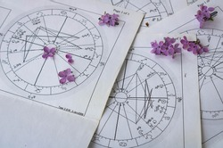 Old printed astrology charts with tiny lilac flowers