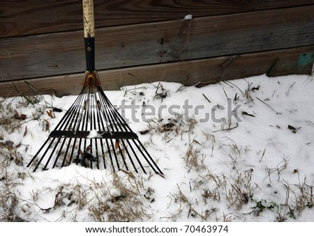 Old rake and snow
