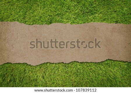 old recycled paper ripped on green grass texture.