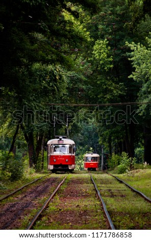 Old red trams at the perspective distance. Tram goes through a forest in the Kiev, Ukraine. Summer landscape in a park with trams, background. #1171786858