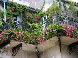 Old Romantic Balcony ful with flower
