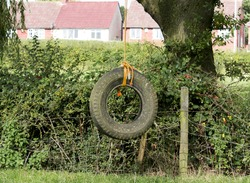 Old rope swing made from a tractor tyre