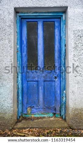 Old rotten front wooden door with blue peeling paint.