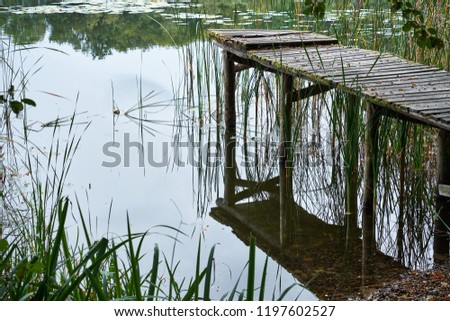 Old rotten pier made of wood on a lake covered in moss with missing planks at a lake in the forest. Closeup version with focus on the piers reflection in the water. #1197602527