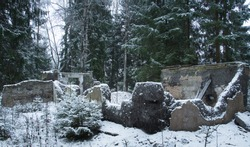 old ruined building in the winter forest