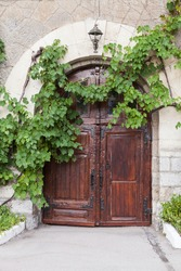 Old rural house wall with dark wooden door and green vine as a decorative plant, vertical background photo texture