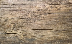 old rustic wood with mold or fungal background texture top view