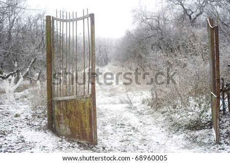 Old rusty gate in winter park