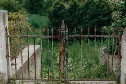 old rusty iron gate. garden entrance