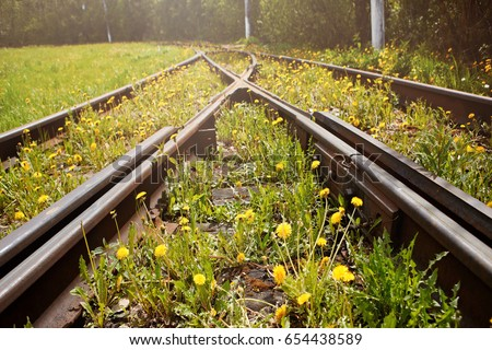 Old rusty rails. Tram tracks, overgrown with grass and dandelions. The concept of ecology, the outgoing fashion and nostalgia
