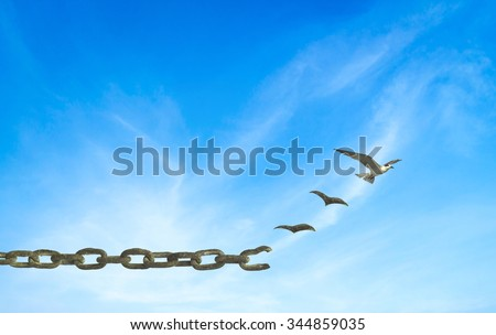 Old rusty steel chain transform into flying birds  over blue sky background. International Day for the Abolition of Slavery, Freedom, Sin, Forgiveness, God, Repentance, Helper, Redeemer concept.