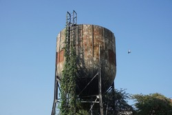 Old rusty steel water tank, ladder beside. Plant climbing on object. Blue sky with small bird background. Concept of water tank, rusty metal texture, rusty steel.