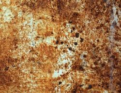 Old rusty tank texture