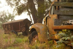 Old rusty truck laying on a farm amongst tall grass and trees.