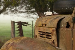 Old rusty truck sits in a rural paddock amongst the trees.