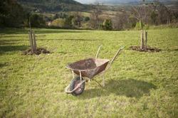 Old rusty wheelbarrow cart in the garden