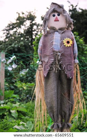 Old Scarecrow Guarding Allotment Plot Vegetables