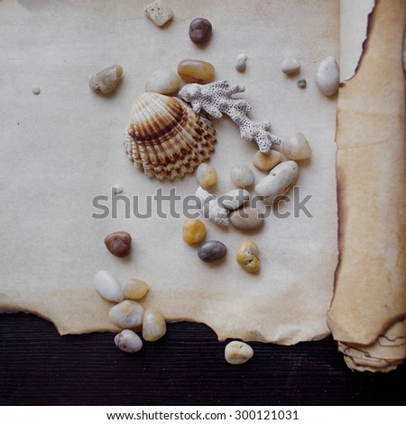 Old scroll of parchment with sea pebbles and seashells, nautical theme, place for text