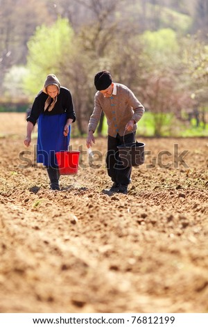 Old senior couple of farmers planting seeds mixed with fertilizer, manually