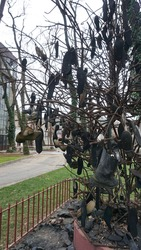 Old Shoe Fabric Tree in Istanbul, Turkey, Focus on the shoe tree