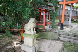 Old shrine with red torii gate and stone guardian dog