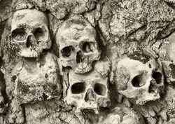 old skulls at a wall