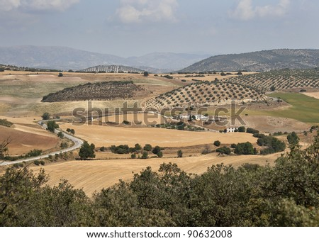 Old Spanish Farmhouse surrounded by Olive trees, Andalusia, Cordoba Province, Spain