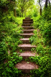 Old stairs and surrounding vegetation at Codorus State Park, Pennsylvania.