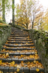 Old stairs with autumn leaves in the city park.
