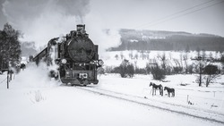 Old steam train puffing across winter landscape in Sudeten between Czech Republic and Germany. Vintage looking photo of transportation from 19th century, 20th century in Europe. Black and white.Retro