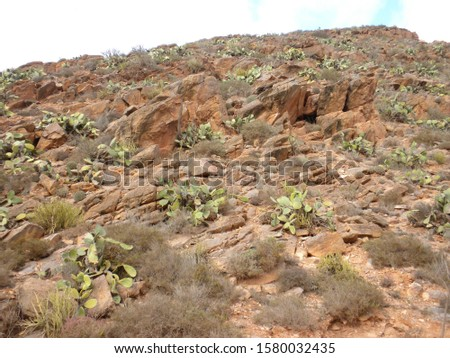 Old stone mountains and ancient geological formation.                                #1580032435