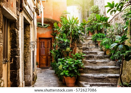 old stone stairs decorated with ...