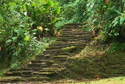 Old stone stairs in Ciudad Perdida (Lost City), built by the people of Tayrona. This archeological site is close to Santa Marta in the Sierra Nevada, Northern Colombia.