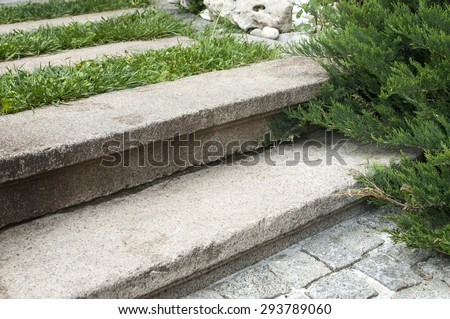 Old stone steps in back yard house garden closeup