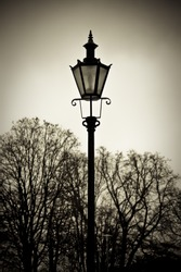 Old style street lantern with trees in background