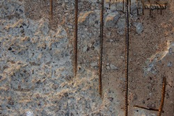 Old surface of grey cracked textured concrete slab with armature rusted bars, can be used as a background