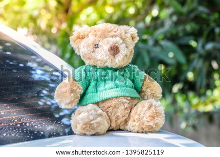 Old Teddy - Brown Teddy bear put green shirt sitting on the back of a white car in the afternoon, on bokeh nature background, Cute brown teddy bear. #1395825119