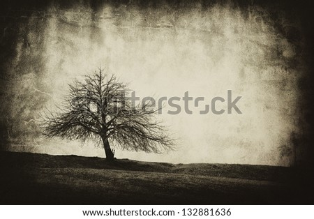 old textured abstract single tree