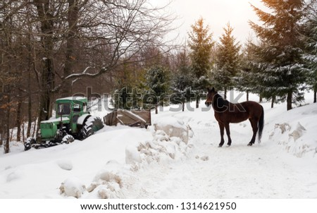 Old Tractor stuck in snow and horse standing in snowy weather
